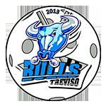 treviso-bulls